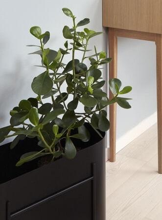 Hübsch plantenbak