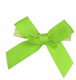 Ready to go ribbon with clip - apple green