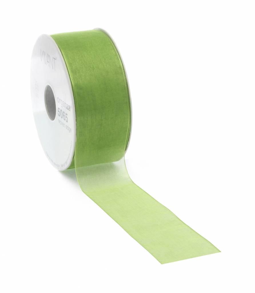 Organza ribbon - Spring Green