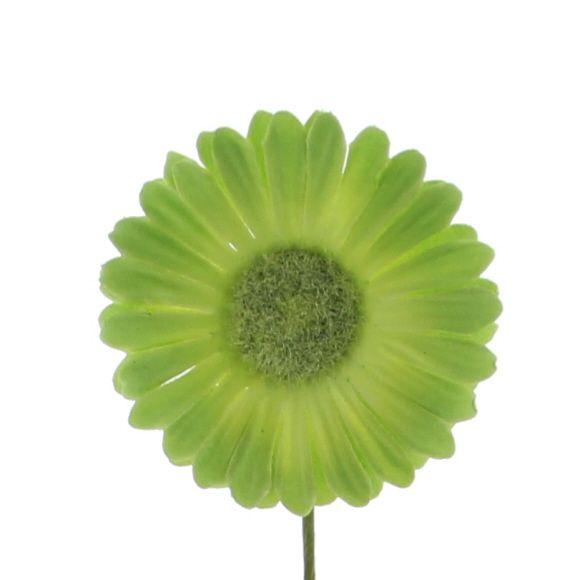 Flower Germini - 65mm - light green - 96 pieces
