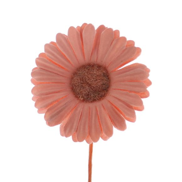 Blume Germini - 65mm - Salm - 96 Stück