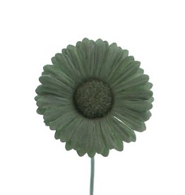 Flower Germini  smokey green