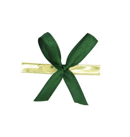 Ready to go ribbon with clip -  green