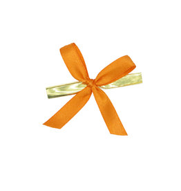 Ready to go ribbon with clip - orange