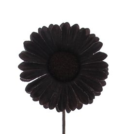 Flower Germini dark  brown