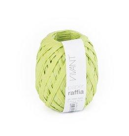Paper Raffia - Spring Green - 6 Rolls