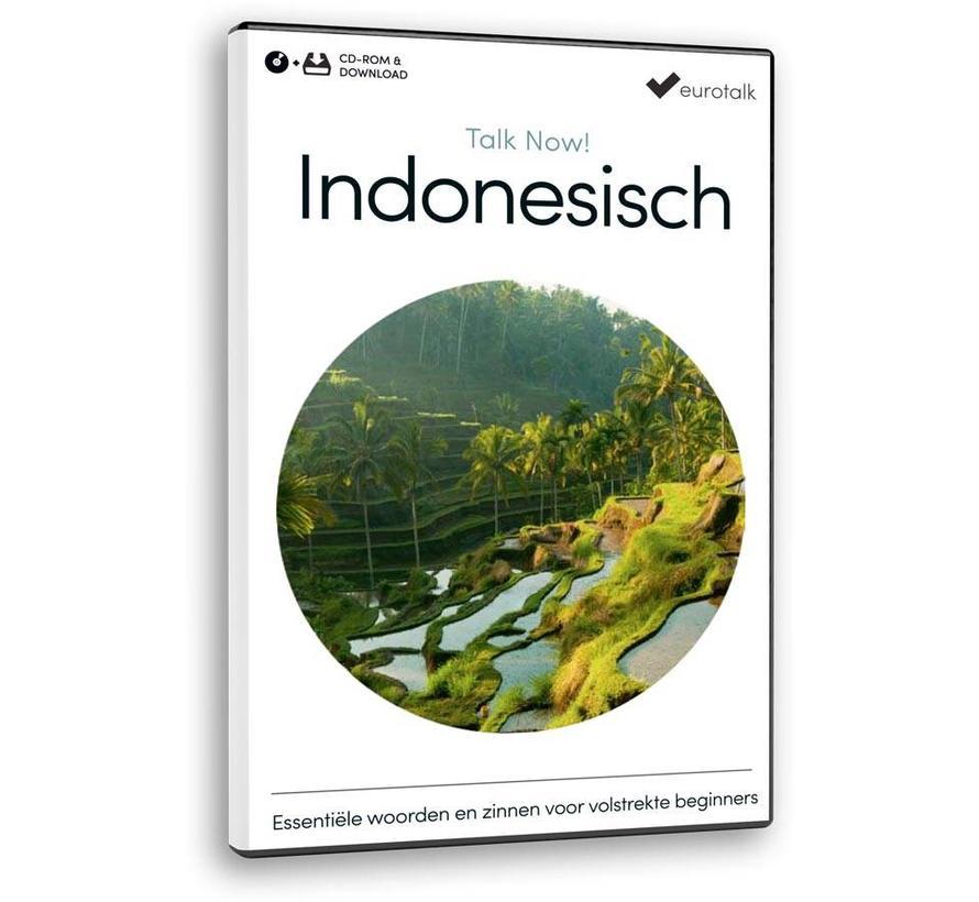 Basis cursus Indonesisch voor Beginners