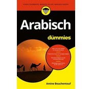 Talen leren voor Dummies - Leerboeken Arabisch leren voor Dummies (Boek + Audio)