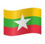 Birmees