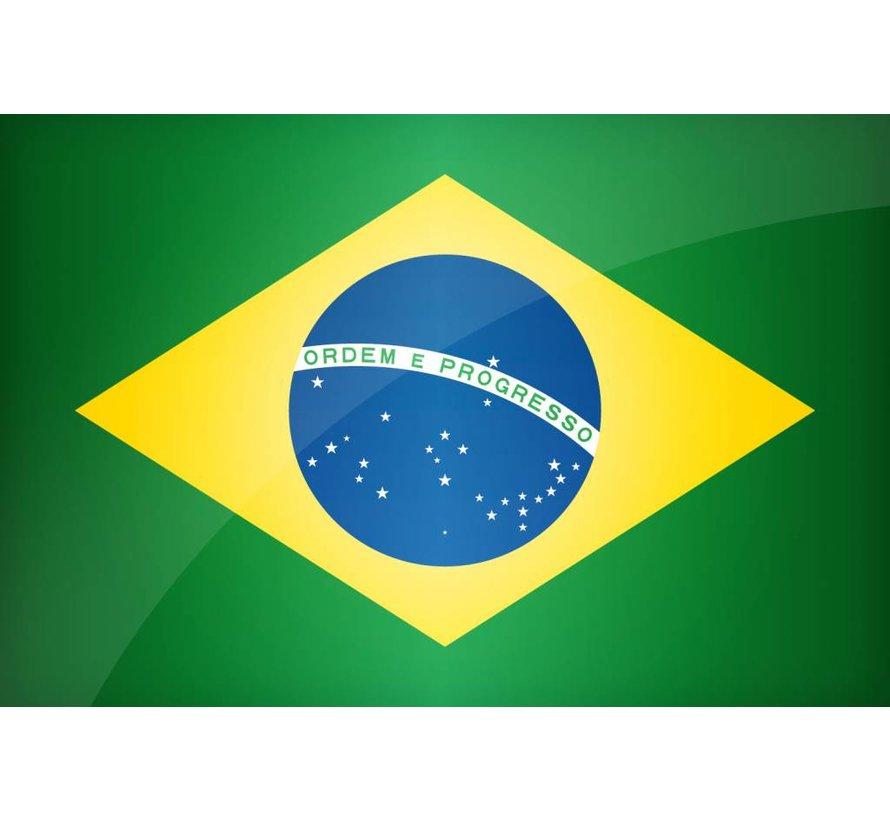 Instant Braziliaans Portugees voor Beginners