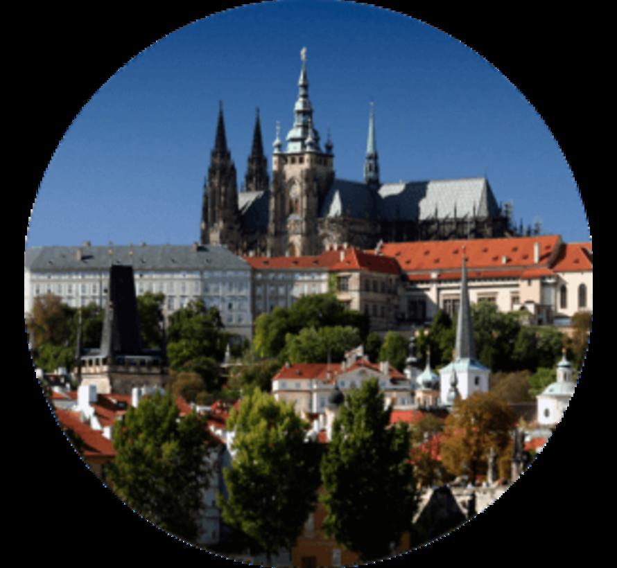 uTalk leer Tsjechisch - Online taalcursus