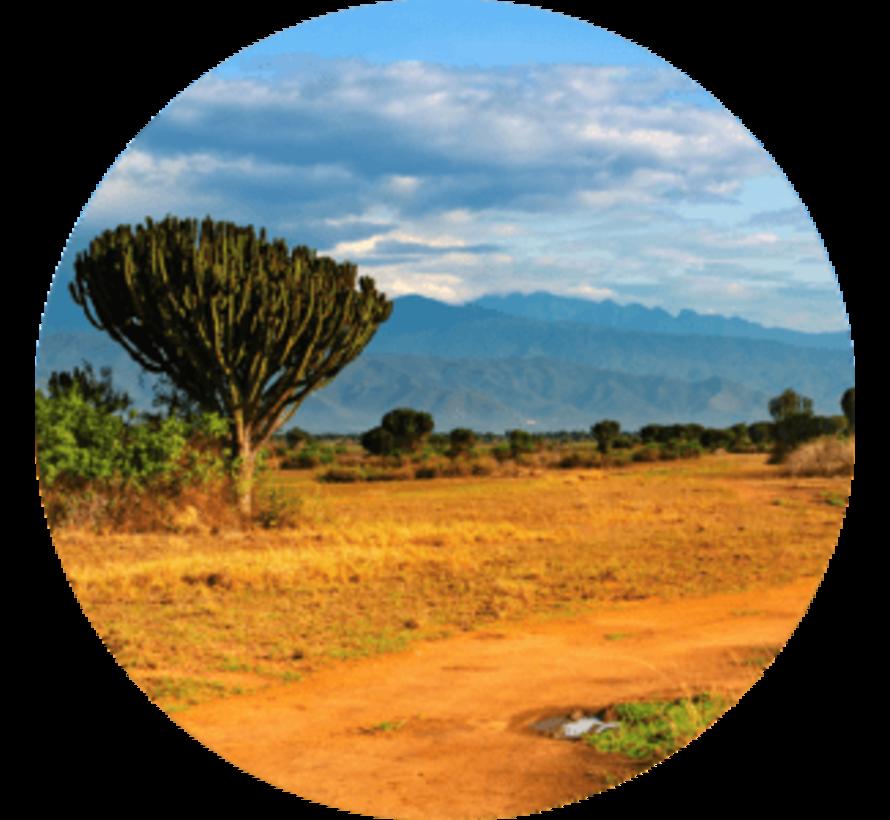 uTalk leer Luganda - Online taalcursus