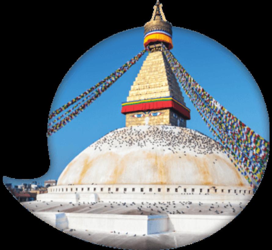 Instant Nepalees voor Beginners