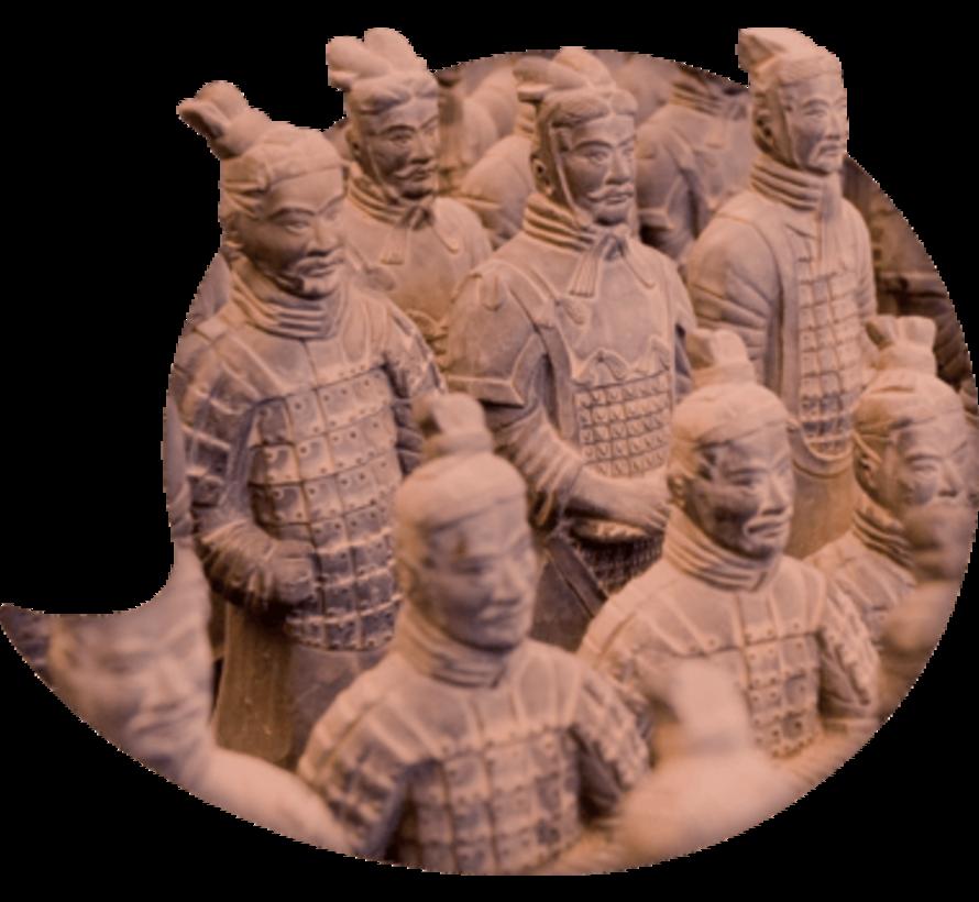 Basis cursus Chinees Mandarijn voor Beginners