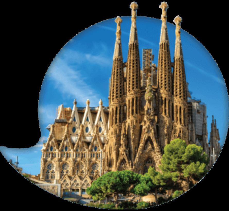 De complete cursus Catalaans: Online taalcursus + Taalgids Catalaans