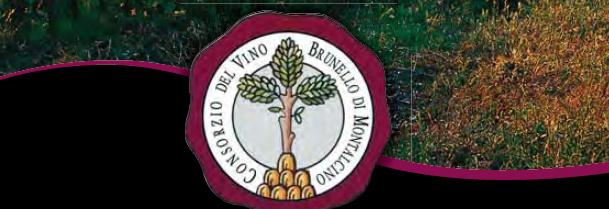 Brunello di Montalcino 2015 DOCG