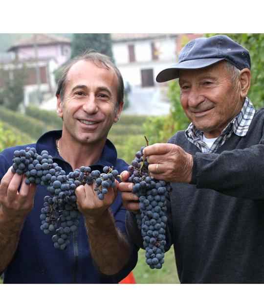 Alles wat je moet weten over de Barolo - Koning der Wijnen