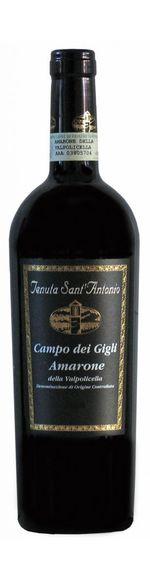 Amarone della Valpolicella - Campo dei Gigli - 2015 - Tenuta Sant'Antonio