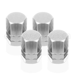 Tire valve caps (universal) – Silver