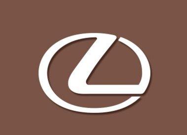 Lexus Schlüsselcover