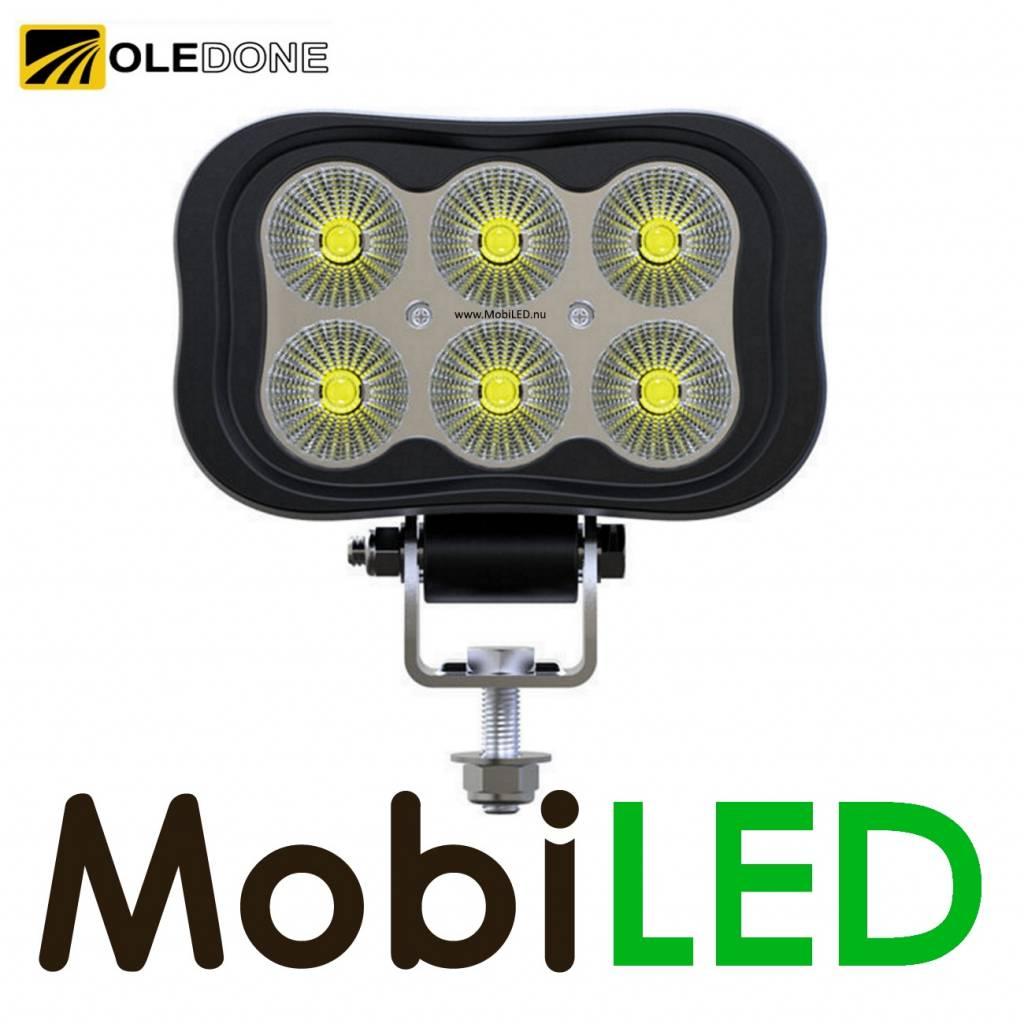 OLEDONE Oledone Transformer breedstraler/werklamp WD-6L30