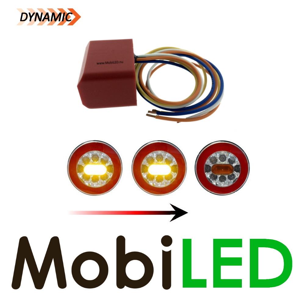 Module indicateur dynamique 24 V