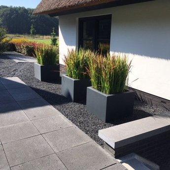 Buxus polyester 40x40x80 cm plantenbak