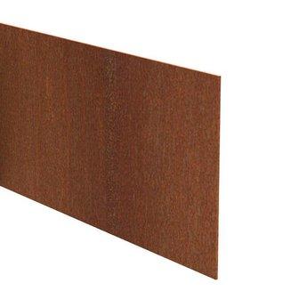 Kantopsluiting cortenstaal recht 230 cm 3 mm (25 st )