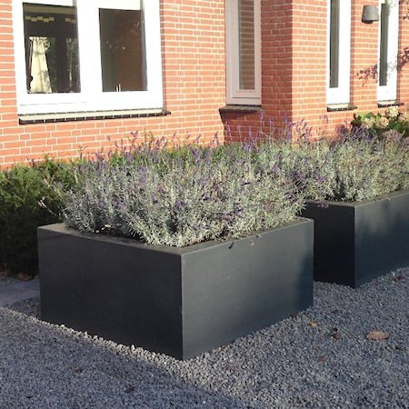 Plantenbakken Voor Buiten Groot.Buxus Polyester 60x60x60 Cm Plantenbak