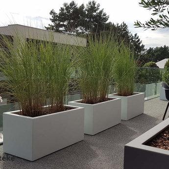Buxus polyester 150x50x60 cm plantenbak