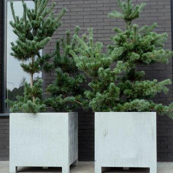 VADIM verzinkte plantenbak 150 x 50 x 60 cm