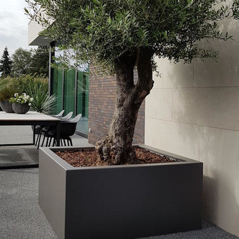 Buxus polyester 200x100x40 cm plantenbak