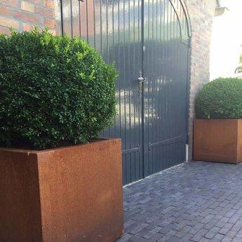 Andes cortenstaal 200x50x50 cm plantenbak