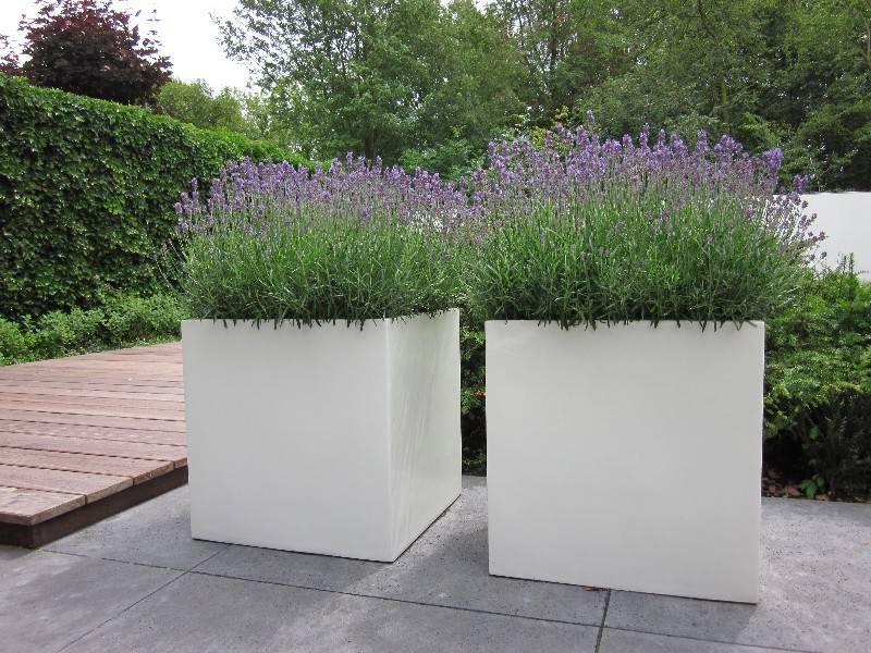 Verrijdbare Plantenbakken Voor Buiten.Polyester Bloembakken En Plantenbakken Tuinvoordeel Eu