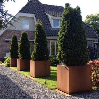 Andes cortenstaal met poten 100x100x60 cm plantenbak