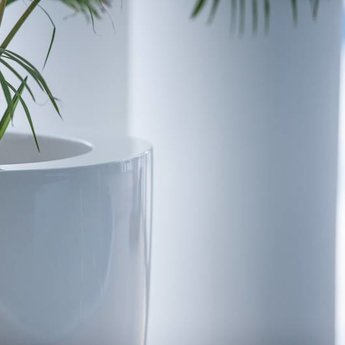 Buxus Hoogglans polyester 80x80x80 cm plantenbak