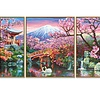 Schipper Kirschblüte in Japan