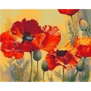 Artventura Poppies