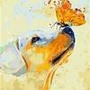 Artventura Welpe und Schmetterling