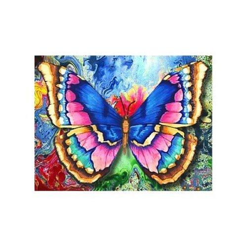 Artibalta Butterfly