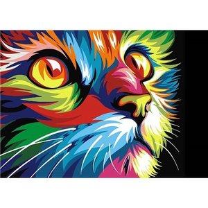 Regenboog Kat