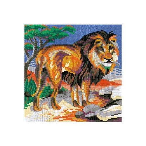 Afrika - Leeuw