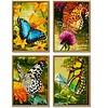 Schipper Schmetterlinge