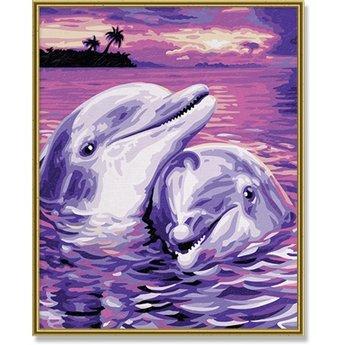 Schipper Dolphins