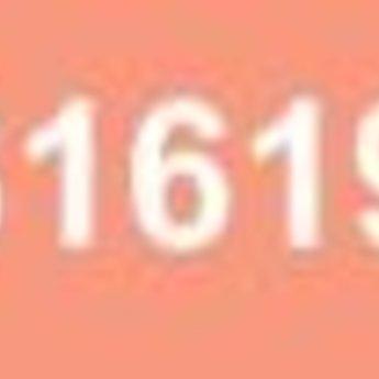 619 - Vleeskleur