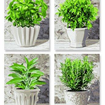 Schipper Herbs