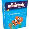 Ministeck Clownfish