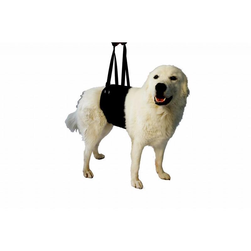 Vetlando Til en Draaghulp voor honden