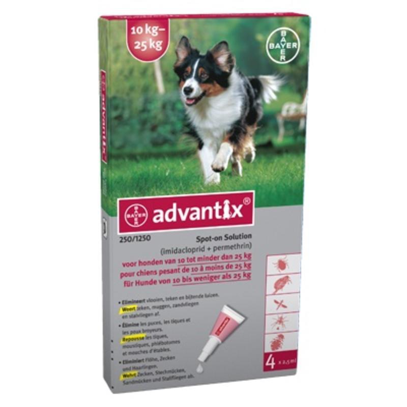 Effectief middel tegen vlooien en teken bij middelgrote honden