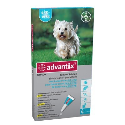 Advantix 100 (4pipet)